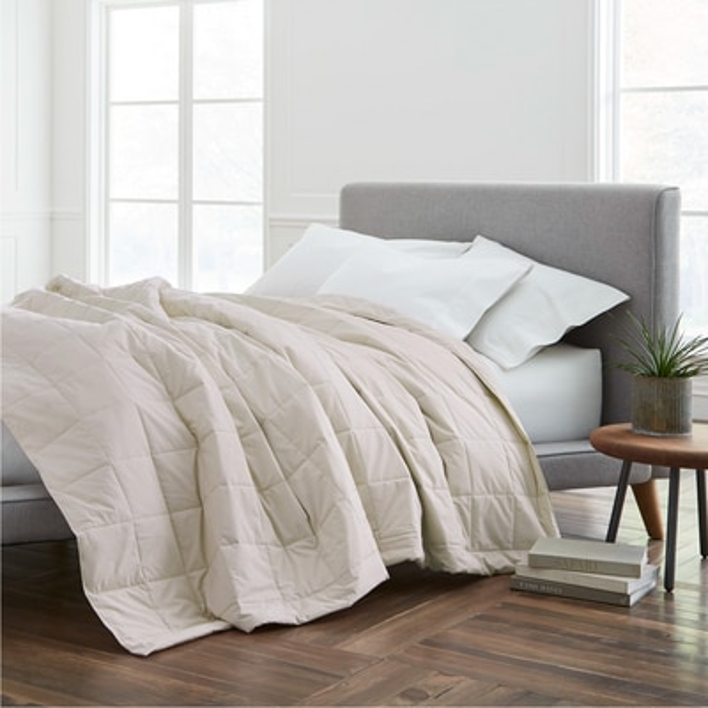 EcoPure(R) Cotton Filled Twin Dark Blanket