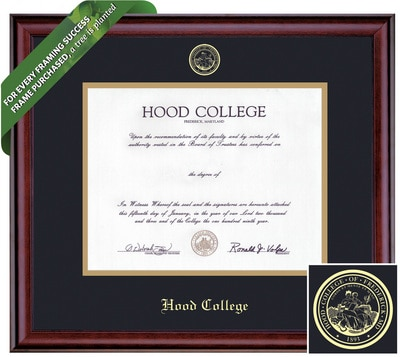 Framing Success 8 x 10 Classic Gold Embossed School Seal Bachelors, Masters Diploma Frame