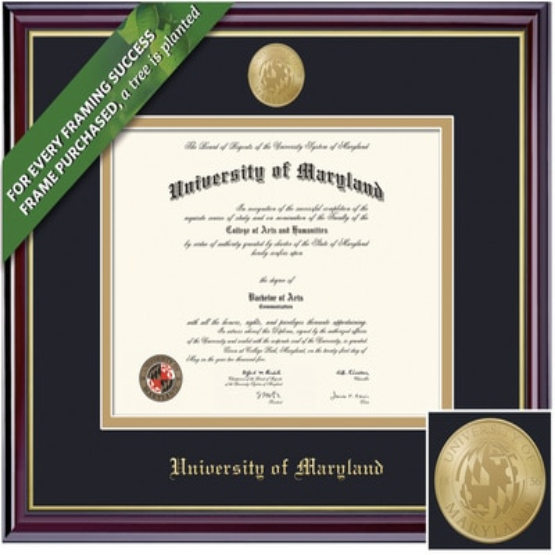 Framing Success 13 x 17 Windsor Gold Medallion Bachelors, Masters Diploma Frame