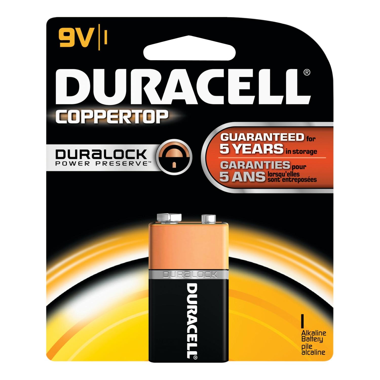 Single 9-Volt Battery