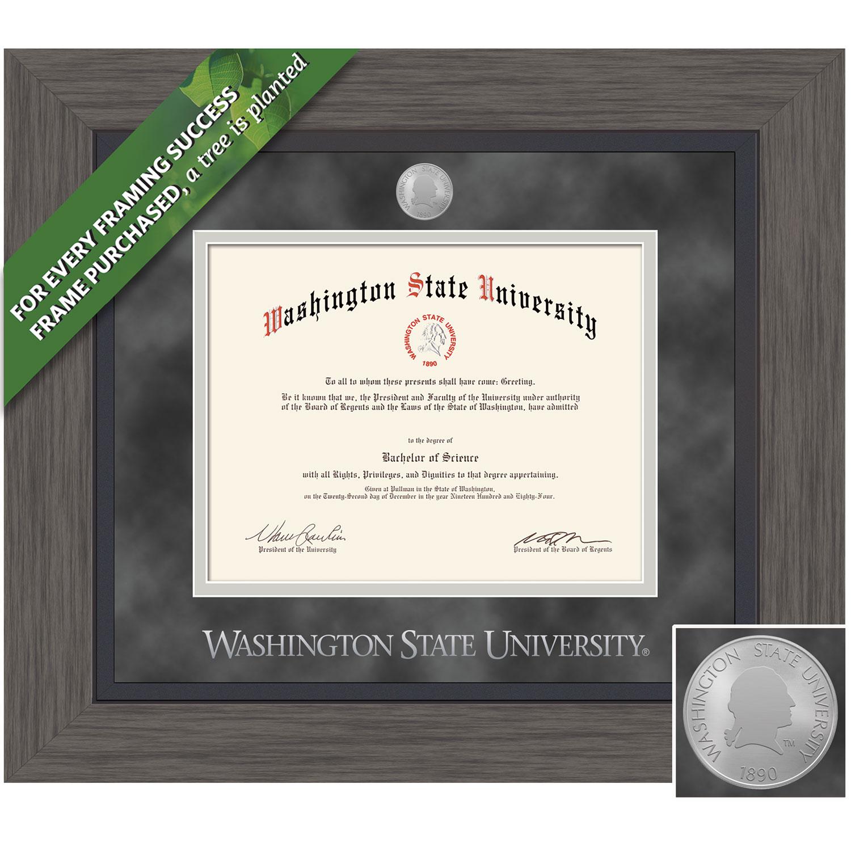 Framing Success 11 x 14 Greystone Silver Medallion Bachelors, Masters, Pharmacy, Architecture, Veterinary Diploma Frame