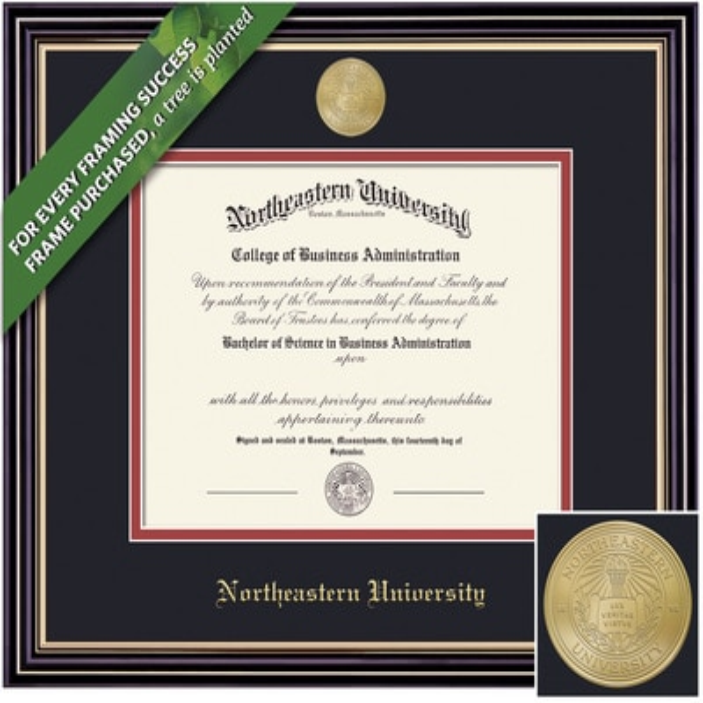 Framing Success Classic Diploma Frame. Bachelors, Masters, PhD