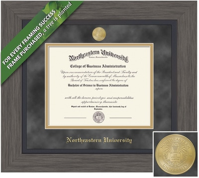 Framing Success 11 x 14 Greystone Gold Medallion Bachelors, Masters, Doctorate Diploma Frame