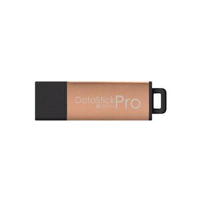 Centon USB 2.0 32GB Rose Gold Metallic