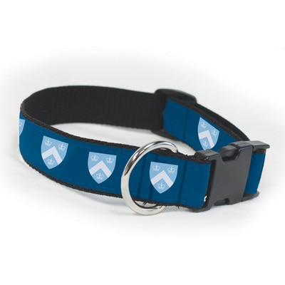 Columbia University Large Dog Collar