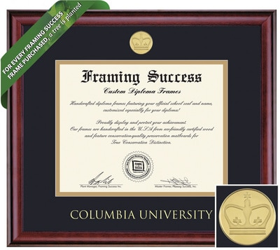 Framing Success 10.5 x 12.5 Classic Gold Medallion Bachelors, Masters Diploma Frame