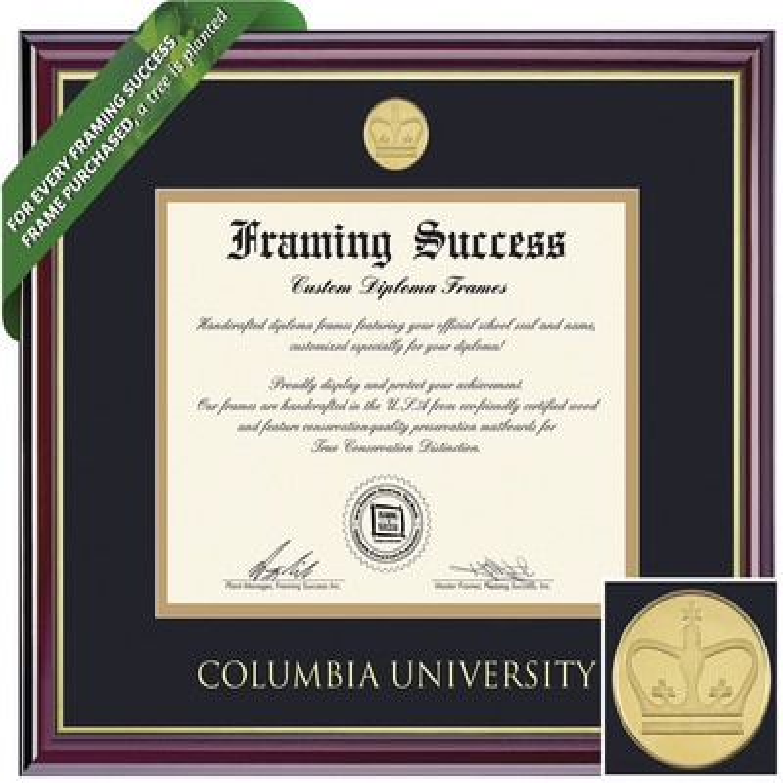 Framing Success 10.5 x 12.5 Windsor Gold Medallion Bachelors, Masters Diploma Frame