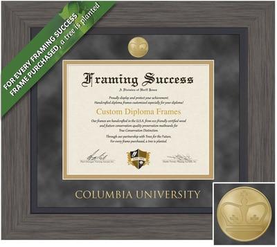 Framing Success 10.5 x 12.5 Greystone Gold Medallion Bachelors, Masters Diploma Frame