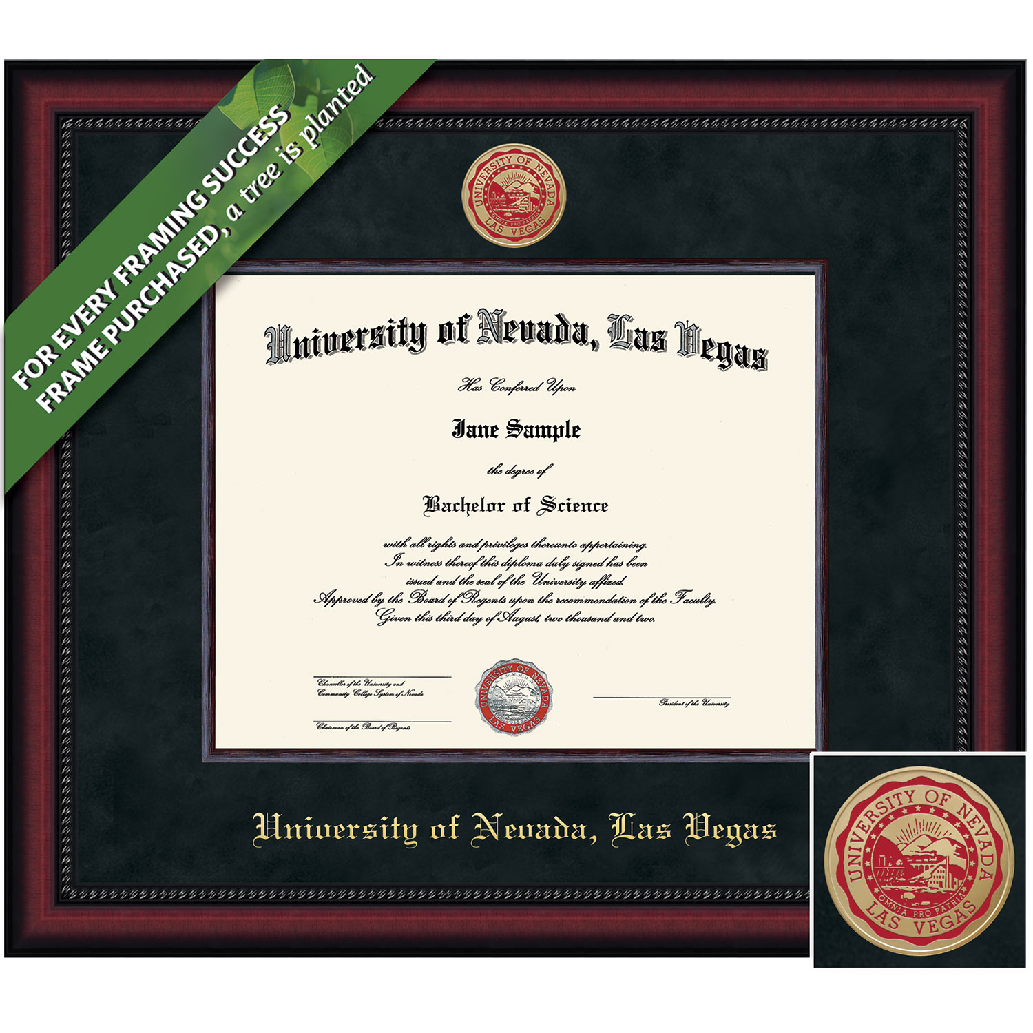 Framing Success 8.5 x 11 Legacy Colored Medallion Bachelors, Masters Diploma Frame