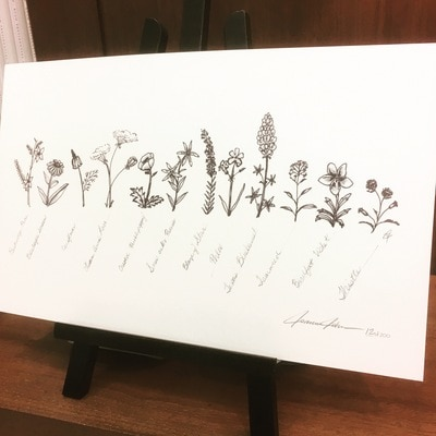Texas Wildflower Signed Print