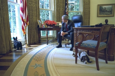 Oval Office with Barney Postcard