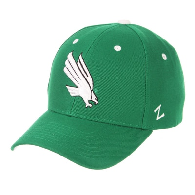 University of North Texas Zephyr Competitor Structured Curved Bill Adjustable Cap Hat