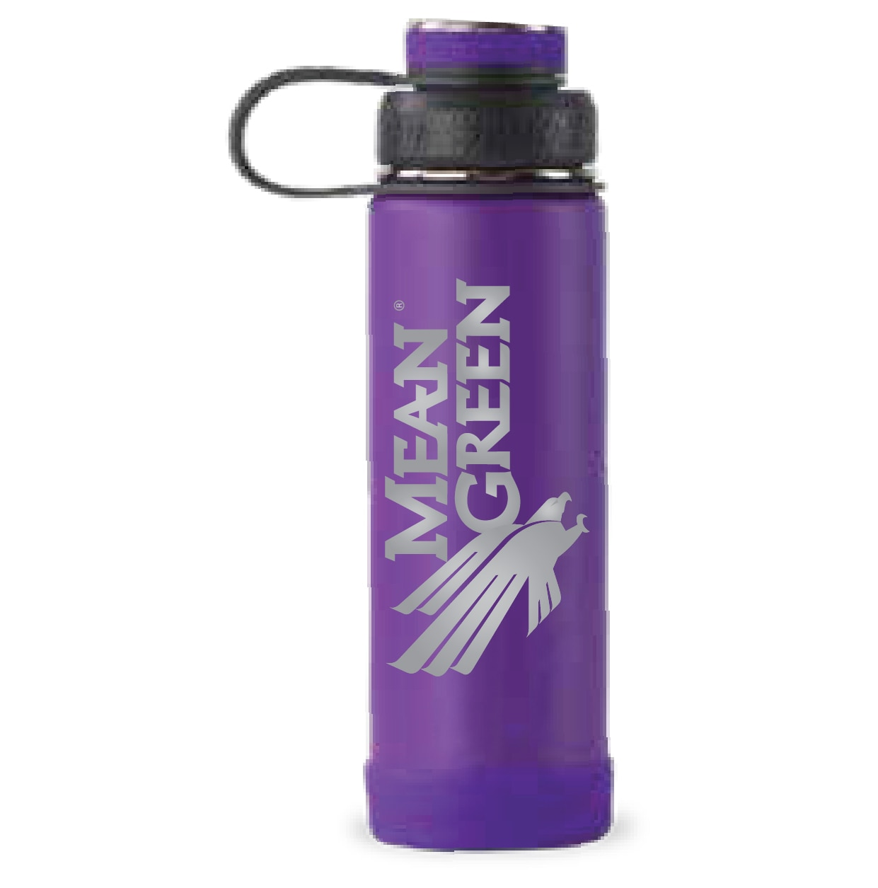 University of North Texas 20 oz Ecovessel Boulder Water Bottle