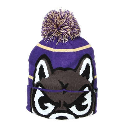 Washington Huskies Bandit