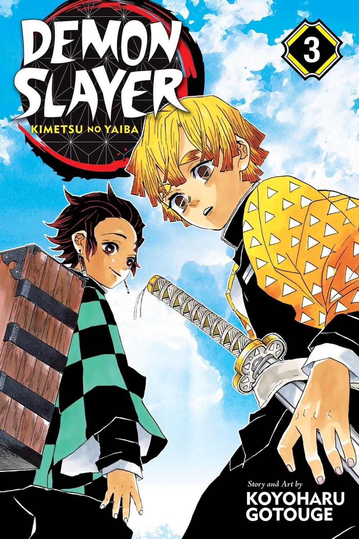 Demon Slayer: Kimetsu No Yaiba  Vol. 3  3
